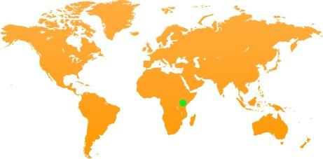 globe-tanzania-2