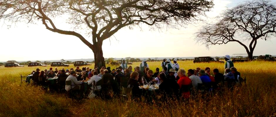 kiroyera tours travellers enjoy african bush picnic