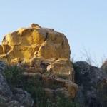 bukoba golden rock