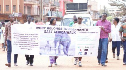 Jim-Nyamu-elephant-campaign-walk-Bukob